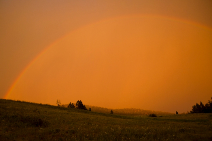 Alleyne-Rainbow-1
